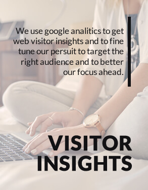 visitor insights